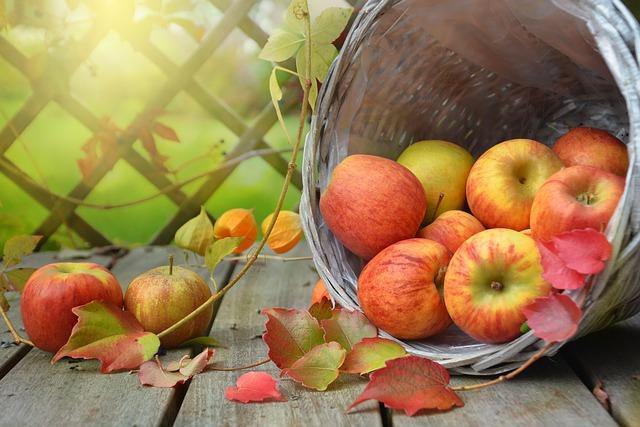 Äpfel sind so wichtig für die täglichen Vitamine im Büro