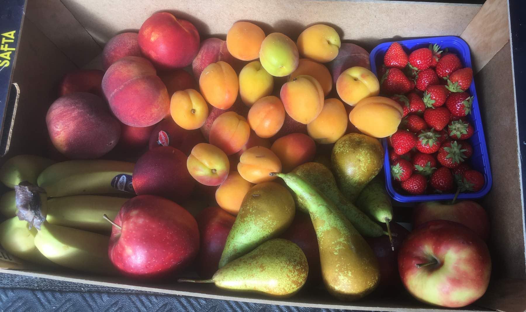 gemischtes Obst für Mainzer Offices, bequem geliefert