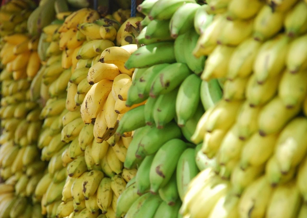 Bananen - welcher <?PHP echo Sandersdorf-Brehnaer;?> liebt sie nicht?