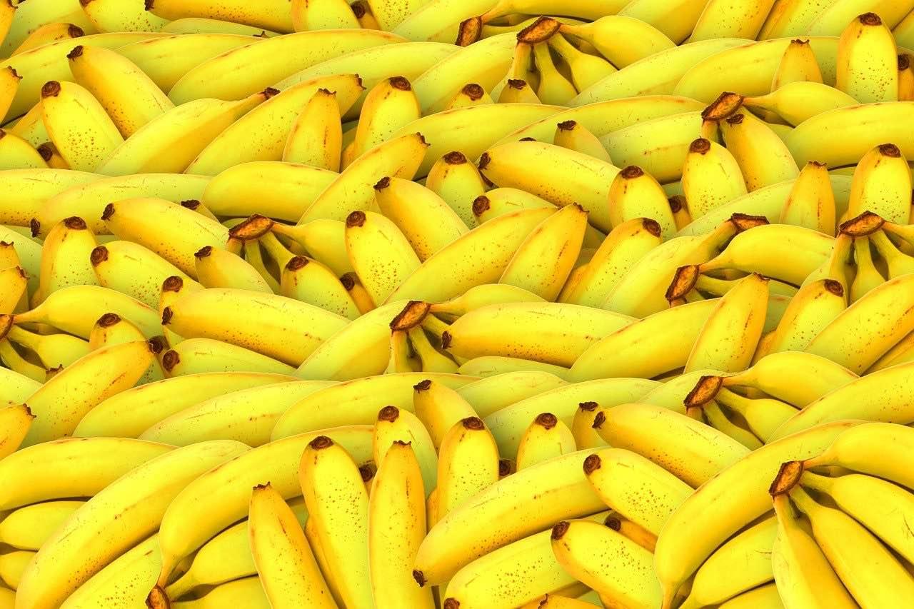 Bananen - welcher <?PHP echo Aalener;?> liebt sie nicht?