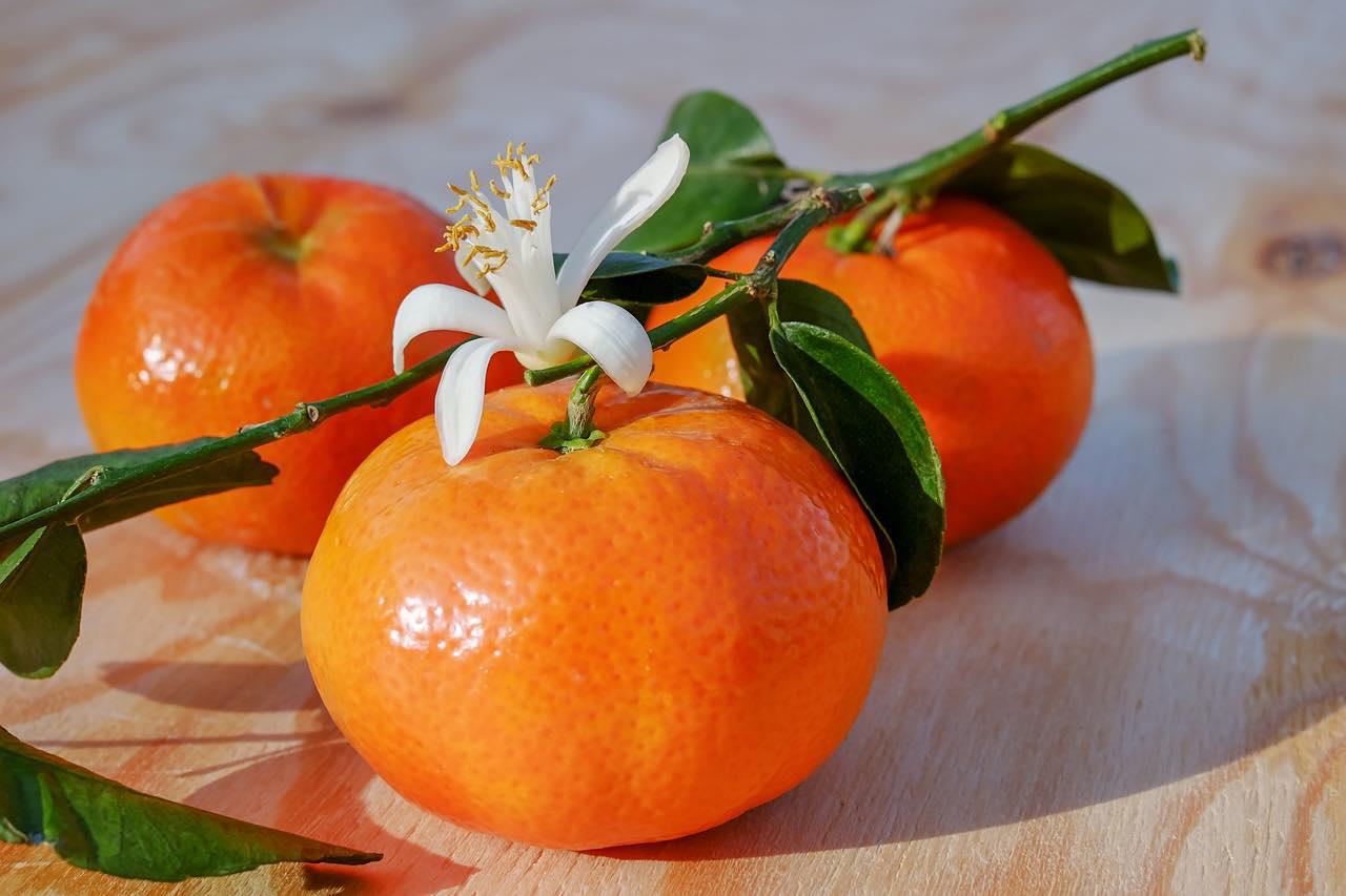 Clementinen sind besonders im Winter als Handobst beliebt in unseren <?PHP echo Brettener;?> Obstkörben