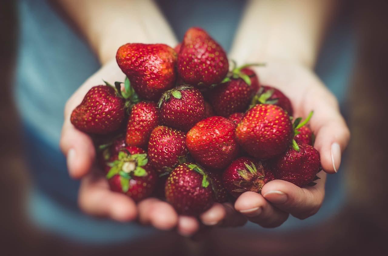 Erdbeeren in der  Hamburger Obstkiste: saftig