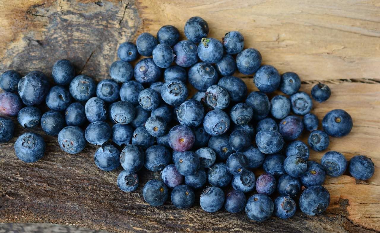in der Obstkiste: Heidelbeeren sind sehr lecker