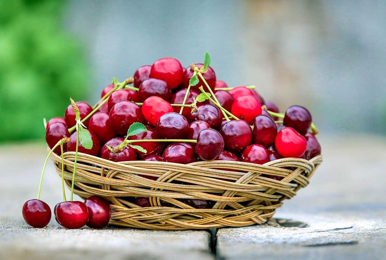 Ab in die Obstkiste: Kirschen müssen da rein