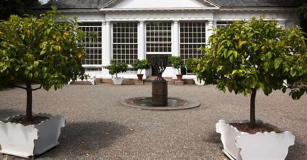 Trampolin im Garten in Muenster