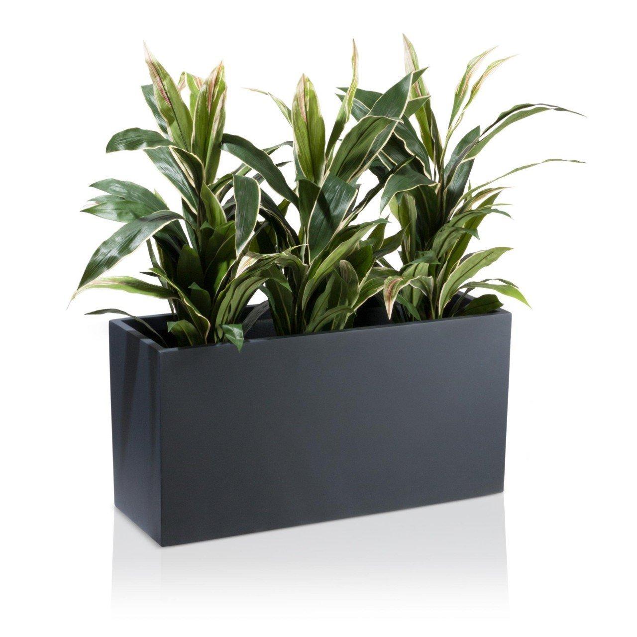 Pflanzenkübel für innen oder aussen
