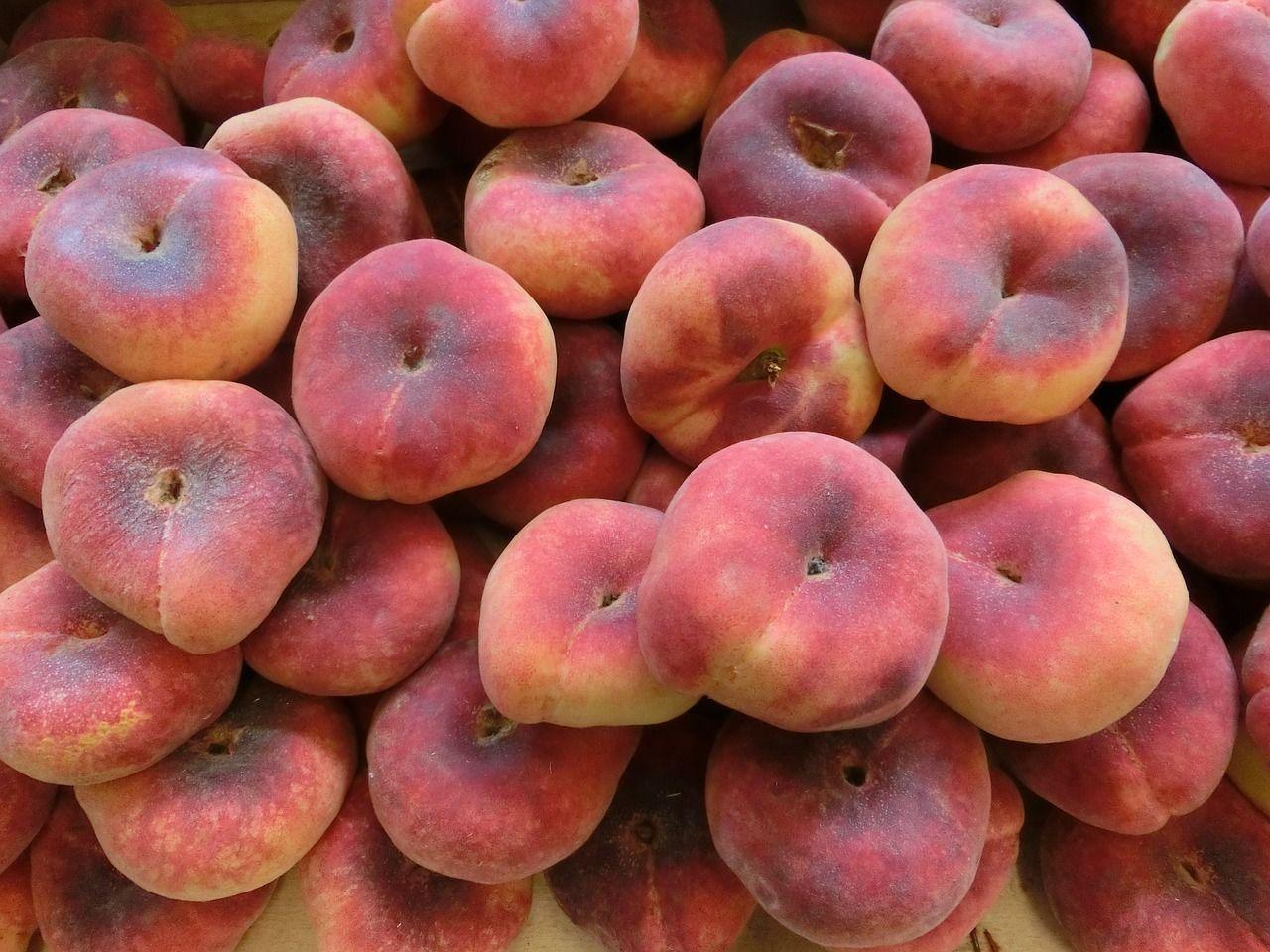 in der Obstkiste und im Obstkorb: leckere Pfirsiche